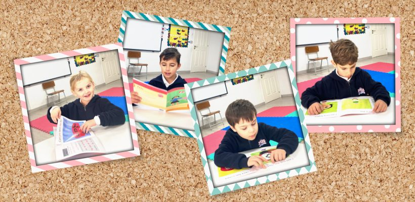Individual Guided Reading