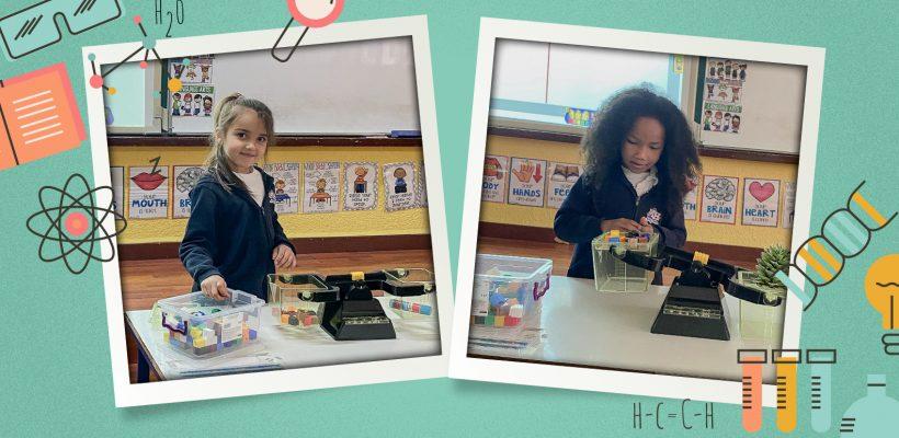 Junior School – Grade 1: Measuring using non-standard units