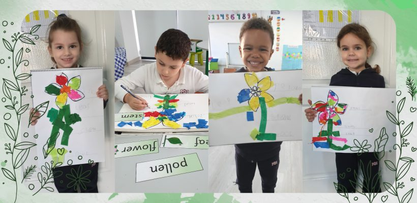 Pre-School –  Kindergarten: Learning and Copy Writing the Basic Parts of a Flower