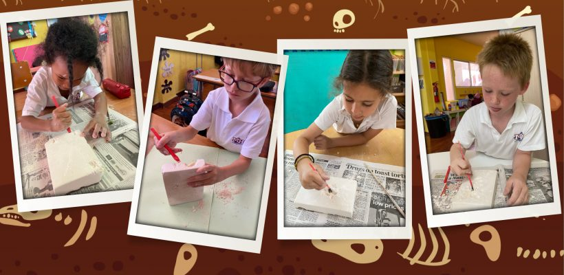 Junior School: Grade 1 students had fun extracting fossils during a 'Dino Dig' in their Dinosaurs Unit.